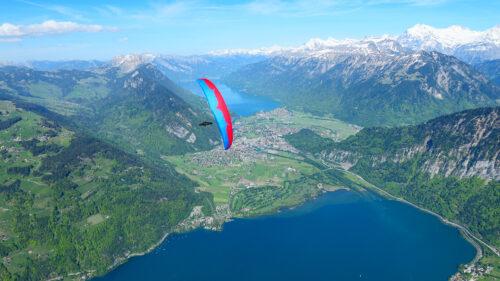OZONE GROUNDHOG | FlyLife Paragliding